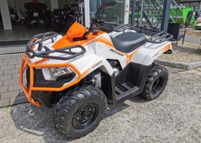 ATV Quad MXU 300